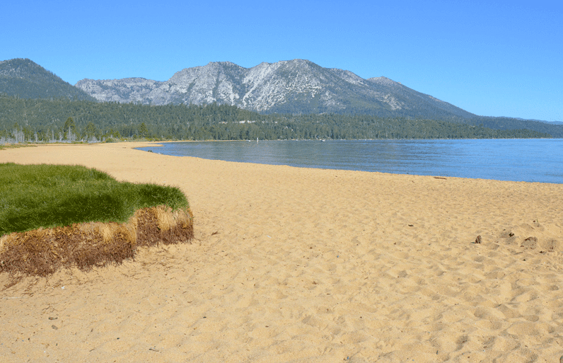 Dog Beach Kiva Lake Tahoe